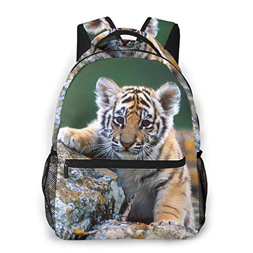 Lawenp Cute Baby Tiger Travel Laptop Backpack Business Anti Theft Slim Durable Laptops Backpack Water Resistant College School Computer Bag for Women & Men Fits 15.6 Inch Notebook