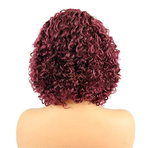 Andongnywell Short Water Curly Wig lace Wigs Human Hair Wig African American Wigs for Black Women Heat Resistant (Wine Red,One Size)