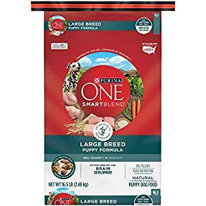 Purina ONE Natural Large Breed Dry Puppy Food, SmartBlend Large Breed Puppy Formula – 16.5 lb. Bag