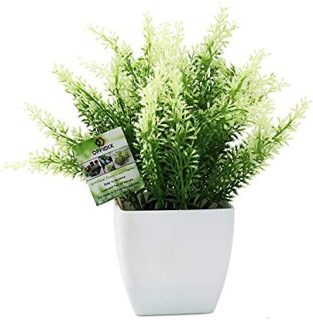 OFFIDIX Plastic Fake Green Plant Faux House Plants Desk Plant Artificial Plants with White Square product image