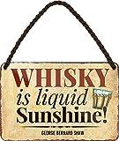 """Targa in metallo divertente con scritta in lingua tedesca """"Whisky is Liquid Sunshine!"""", idea regalo per i fan del whisky, 18 x 12 cm"""
