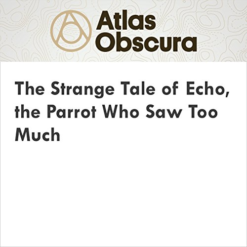 The Strange Tale of Echo, the Parrot Who Saw Too Much cover art