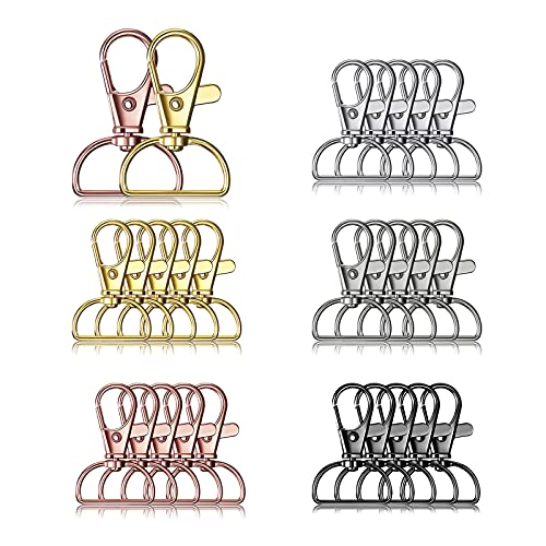 25 Pieces Metal Swivel Clasps Lanyard Snap Hooks Keychain Clip Hooks Lobster Claw Clasps Keychain Hook Clasps with D Rings for Keychain Purse Hardware Sewing Craft Project, 5 Colors (20 mm)
