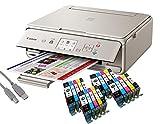 Canon Pixma TS5053 Tintenstrahl-Multifunktionsgerät grau (Drucken, Scannen, Kopieren, WLAN, Print App) + USB Kabel & 20 YouPrint Tintenpatronen (Originalpatronen ausdrücklich Nicht im Lieferumfang)