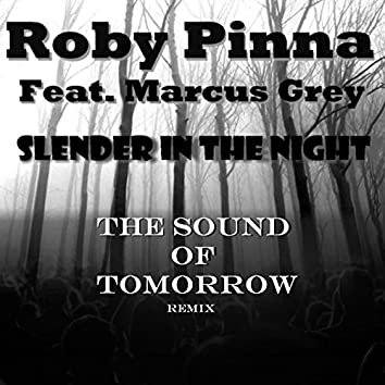 Slender in the Night (Sound of Tomorrow Remix)