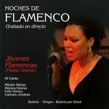 Noches de Flamenco - Jovenes Flamenca (Fiesta Gitana)