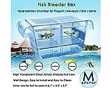 SCSpecial Caja de cría de peces acrílico transparente con ventosas para acuario, incubadora para peces de bebé, camarones y guppy
