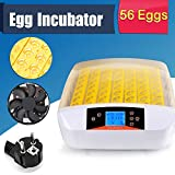 Incubadoras de huevos Digital 48/56 de Polluelo Huevos Incubadora Automática Control De Temperatura para Aves de Corral (56 huevos)