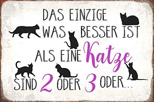 Schatzmix Spruch Besser ist eine Katze oder 2 Metallschild Wanddeko 20x30 tin Sign Blechschild, Mehrfarbig