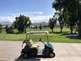 ENERVOLT Solar Golf Cart Kit Universal 180 watt 180w 48v Solar Panel Battery Charger Kit for Golf Cart - Charge While Driving,...