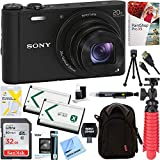 Best Compact Cameras - Sony Cyber-Shot WX350 Compact Digital Camera with 20x Review