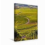 Premium Textil-Leinwand 30 x 45 cm Hoch-Format Iphofen Weinlage Julius-Echter Berg, Leinwanddruck von Haenson
