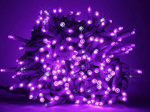 Luccika stringa catena di luci di Natale a led professionale con MaxiLed per ristoranti hotel strade e viali per uso esterno ed interno (Viola con Flash Bianco Ghiaccio, 10 Metri - 100 LED)