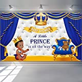Royal Prince Baby Shower Backdrop Photography Background Party Supplies Gold Crown Banner Backdrop Decoration for Birthday Party Bedroom Decoration