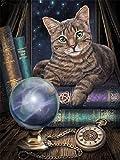 Pintura de diamante gato cuadrado diamante bordado animal rhinestone punto de cruz diamante mosaico diamante pintura decorativa A10 40x50cm