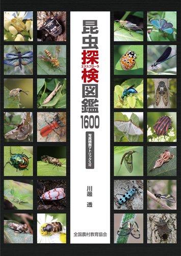 昆虫探検図鑑1600-写真検索マトリックス付-