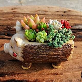 Youfui Cute Animal Shaped Cartoon Home Decoration Succulent Planter Flower Pots (pig)