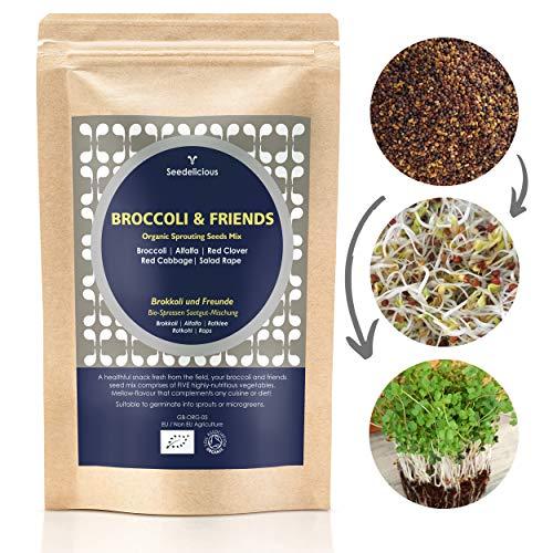 Seedelicious Brokkoli und Freunde Bio-Sprossen-Samen - Mix aus 5 Gemüse-Samen mit Brokkoli, Alfalfa, Rotkohl, Rotklee, Raps - Schnell wachsendes Superfood für besonders gesunde Ernährung  250g