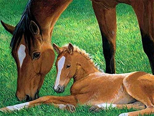 Pintura de diamantes imágenes de animales de diamantes de imitación 5D bordado de diamantes venta caballo mosaico completo decoración para el hogar
