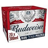 Budweiser Lager Beer 20 x