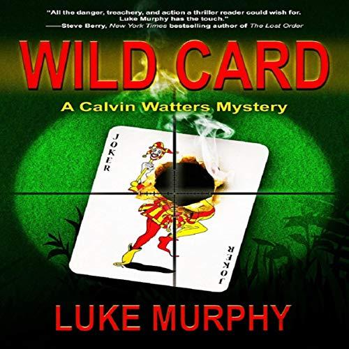 Wild Card Audiobook By Luke Murphy cover art