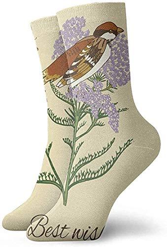Felsiago Vintage Flower Sparrow Postkarte Adult Short Socks Cotton Lustige Socken für Mens Womens Yoga Wandern Radfahren Laufen Fußball Sport