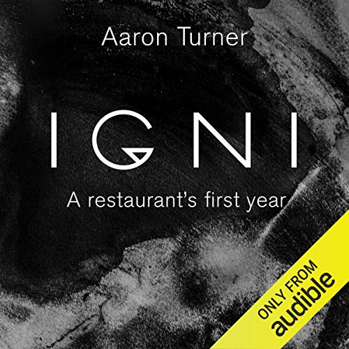 Igni audiobook cover art