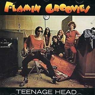 Teenage Head by The Flamin Groovies (1999-11-15)