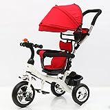 YC Triciclo para Niños Bicicletas para Niños Carritos para Bebés Triciclos...