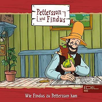 Folge 5: Wie Findus zu Pettersson kam + zwei weitere Geschichten (Das Original-Hörspiel zur TV-Serie)