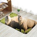 X-Large Collie Sheepdog Rounding Small Number Very Animals Wildlife Agricultural Doormat Entrance Mat Floor Mat Rug Indoor/Front Door/Bathroom/Kitchen and Living Room/Bedroom Mats 31.5 X 19.5 Inch