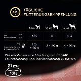 Cesar Nassfutter Feines im Frischebeutel – Variation, 2er Pack ( 2 x 24 x 100 g) - 7