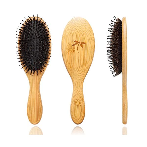 Beauty Shopping Boar Bristle Hair Brush – Hair Brushes for Women & Mens Hair Brush, Detangler