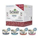 Schesir, Cuccia Winter Edition, Multipack Ecosostenibile di Alimento Complementare per Gatti Adulti in Gelatina - Totale 16 Lattine da 85G