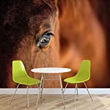 Pferd Pony - Forwall - Fototapete - Tapete - Fotomural - Mural Wandbild - (1216WM) - XXL - 312cm x 219cm - VLIES (EasyInstall) - 3 Pieces
