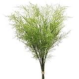 Plantas artificiales de helecho de Boston con revestimiento helecho, hojas falsas de helecho, arbustos falsos para interiores, jardín, mesa, decoración de 30 pulgadas de largo 3 piezas