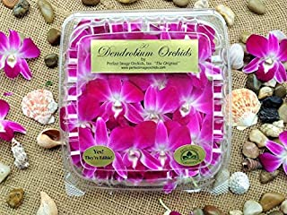 "Purple/White""Edible"" Orchid Flowers""The Perfect Pack"" (50 Count Pack)"