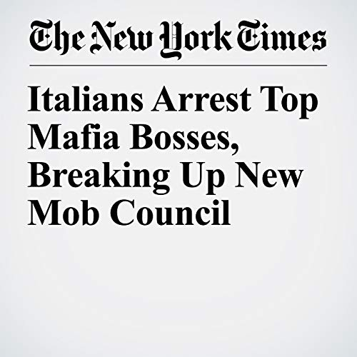 Italians Arrest Top Mafia Bosses, Breaking Up New Mob Council audiobook cover art