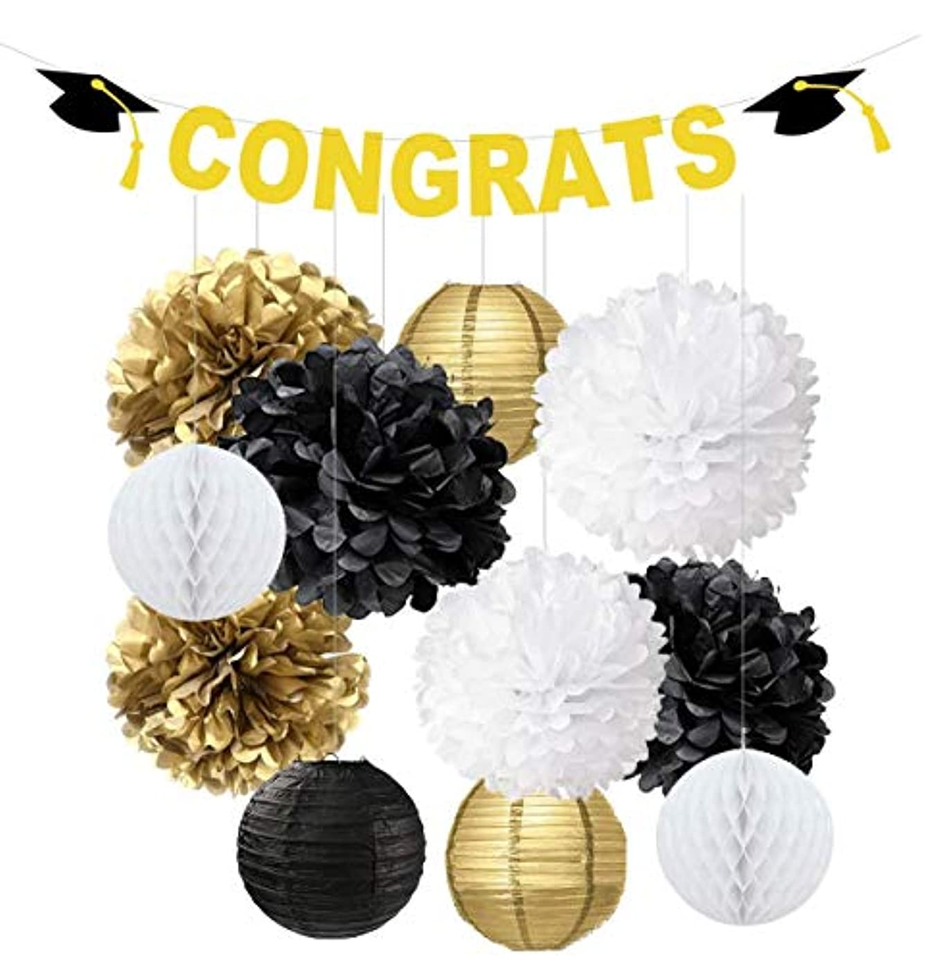 Swibitter 2019 Graduation Party Decorations Gift Set - Hanging Paper Pom Pom, Birthday Party Decorations Kit, Honeycomb for Wedding Baby Shower Bridal Event Office Mental Table Decor