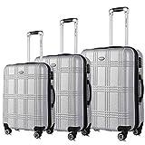 Travel Joy Expandable Luggage Set, Suitcases TSA Lightweight Spinner Hardside Luggage Sets, Carry On Luggage (SILVER, 3 pcs set(20'24'28'))