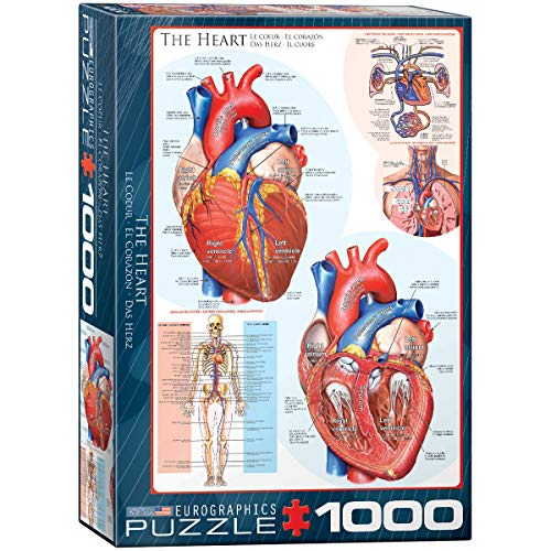 Eurographics 1000 Teile - Das Herz