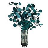 Lzfitpot - Flores secas de lujo tipo hierbas de la Pampa, para decoración de casa, oficina, boda o fotografía