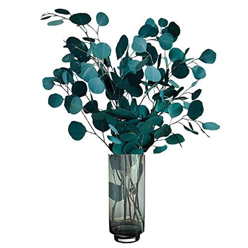 Lzfitpot Flores secas de eucalipto auténticas de lujo secas, decoración natural, ramo de flores secas para casa, oficina, boda, decoración, fotografía, color azul