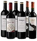 Atlantik Weine, Südamerika Probierpaket Uruguay, Weinpaket mit Rotwein aus Uruguay, Rebsorten Tannat Merlot Cabernet Sauvignon und Malbec (6 x 0,75l)