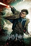 Harry Potter und die Heiligtümer des Todes 2 Poster (61cm