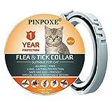 Collar de garrapatas para gatos, Collar antipulgas y garrapatas para Gatos, Tratamiento-antipulgas-para-Gatos, Collar ajustable para pulgas, contra Pulgas,Garrapatas y Mosquitos, resistente al aqua
