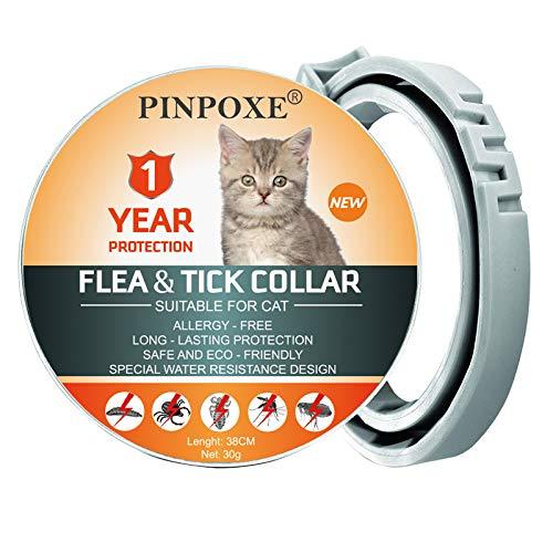 PINPOXE Collare antipulci e zecche per Gatto,Collare Regolabile Impermeabile,Applica a Gatto di Taglia Piccola Media e Grande,Soluzione Naturale Contro i Parassiti per Gatto,Lunga 12 Mesi