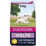 Eukanuba Welpenfutter mit frischem Huhn für kleine Rassen, Premium Trockenfutter für Junior Hunde, 3 kg