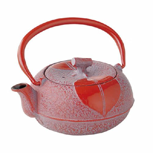 Japanese small cast iron tea kettle pot w net Green Shinonome Nanbu Tetsubin