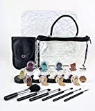 20pc STARTER KIT w/BRUSHES (FAIR 2 & PINK BISQUE) Mineral Makeup Sample Size Set Foundation Blush Veil Eye Shadows